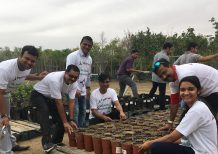 Dubai Chamber corporate volunteering initiative attracts strong participation