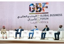 Africa's changing economic landscape is creating new business opportunities: industry experts